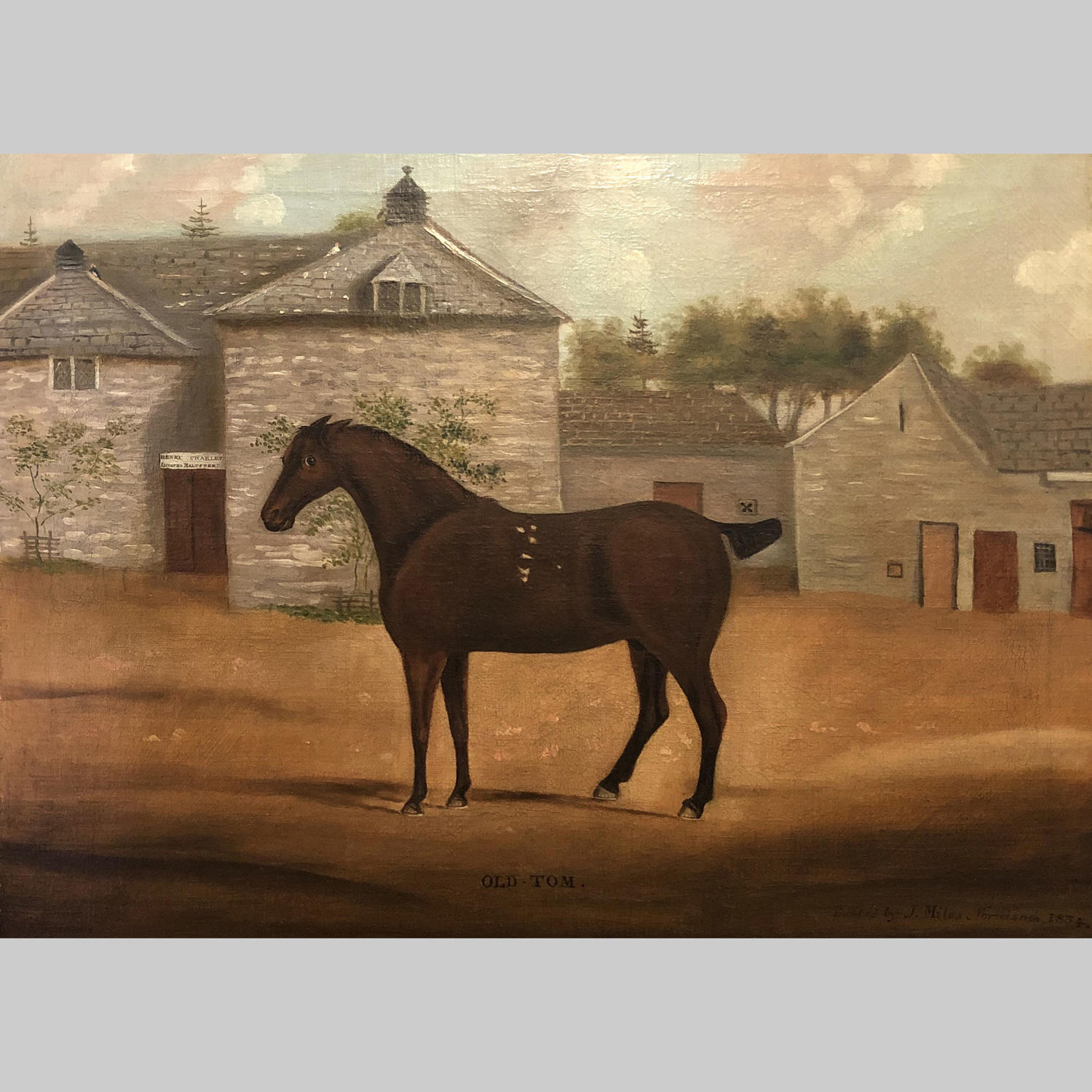 19th century oil painting-Old Tom by John Miles of Northleach