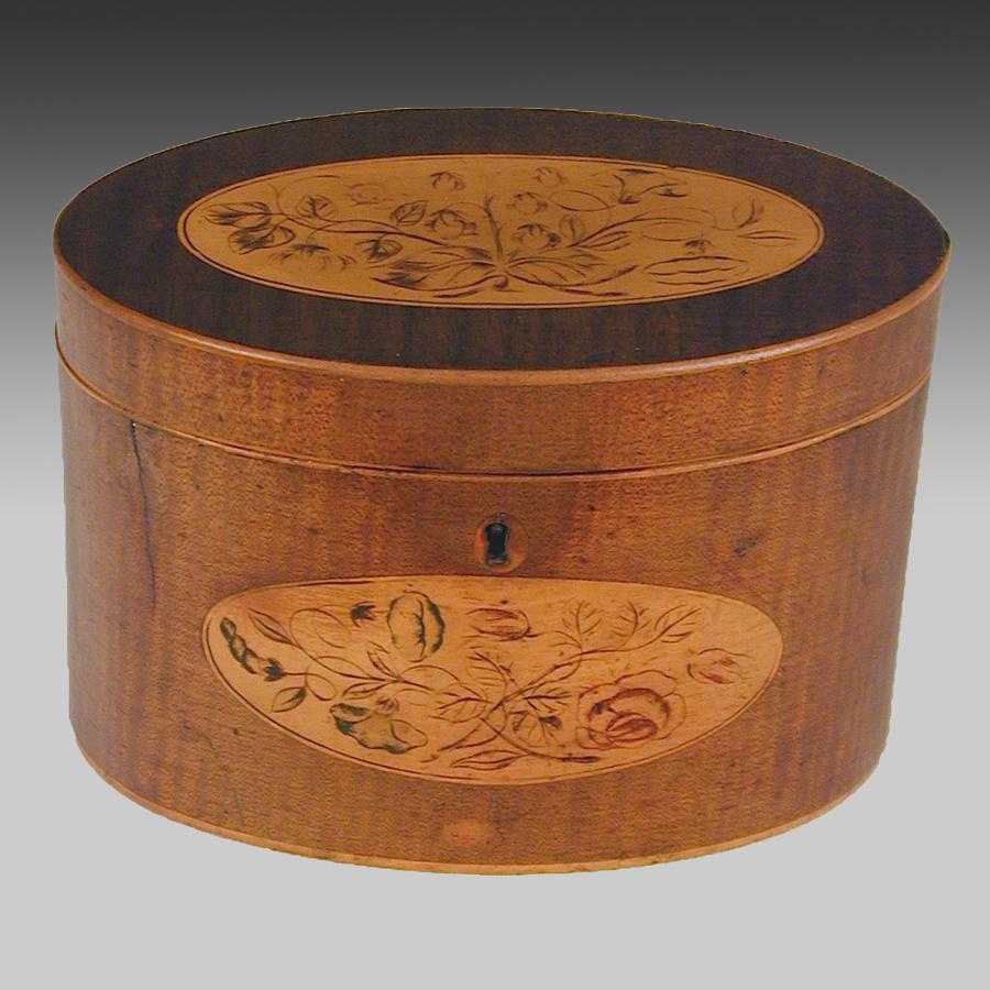 Sheraton oval harewood tea caddy