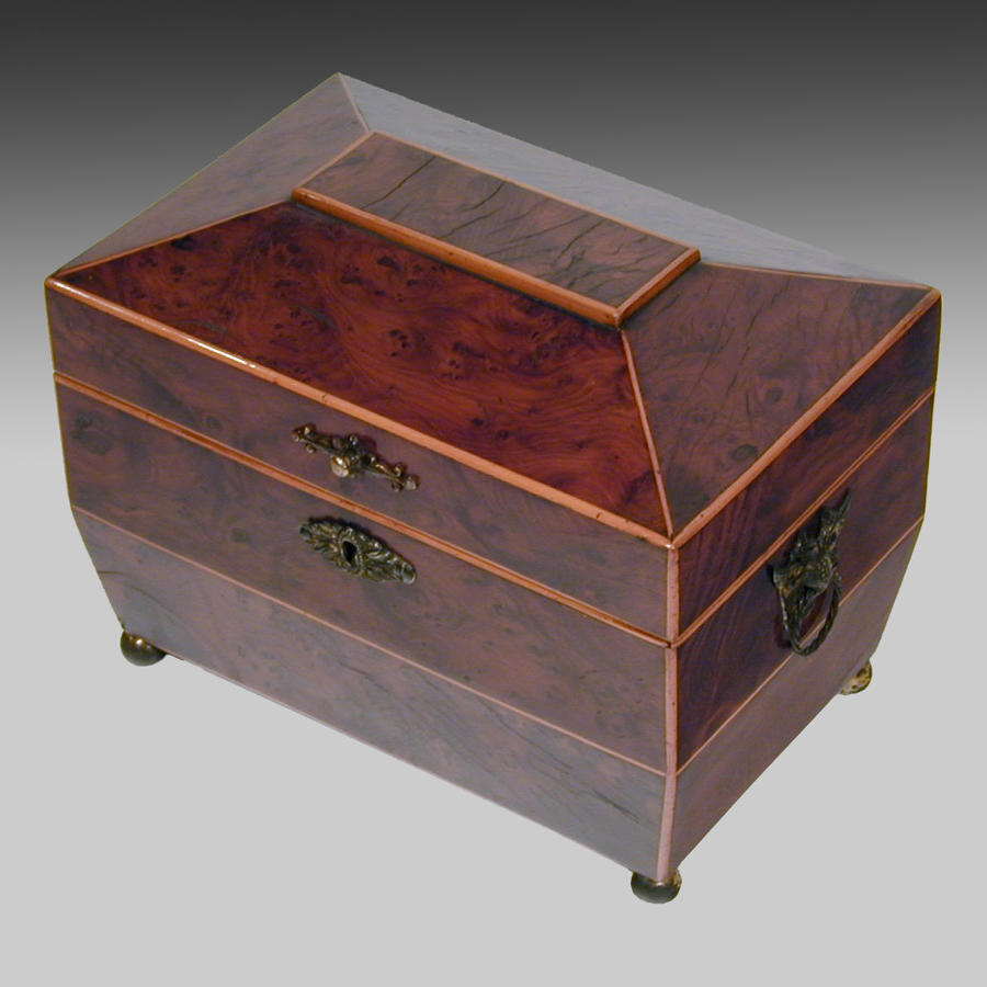Antique Regency yew wood tea caddy