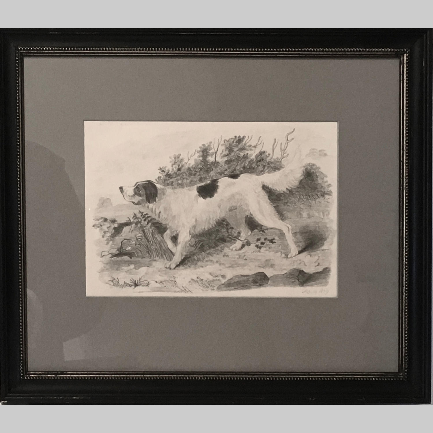Drawing of an English setter by P.J.M. dated 1839
