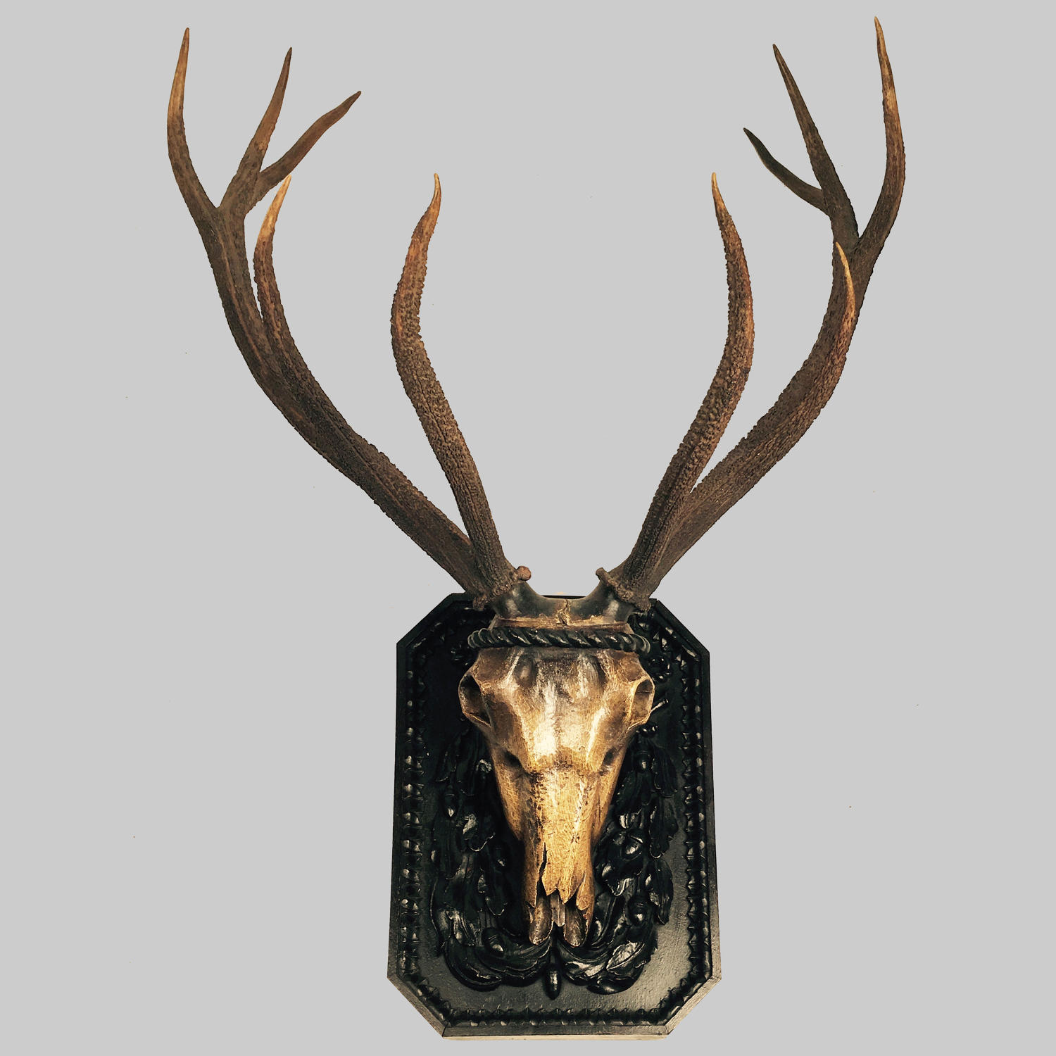 French 18th century antique carved stag's head