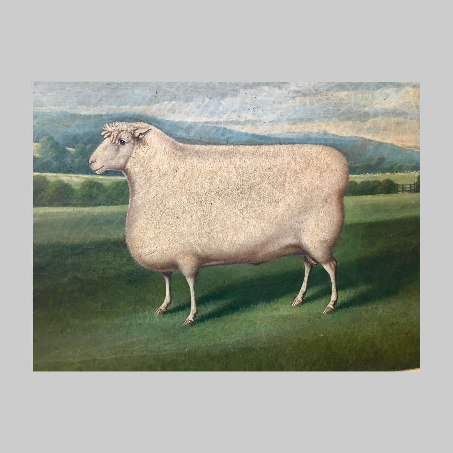 19th century oil painting of a pedigree ram